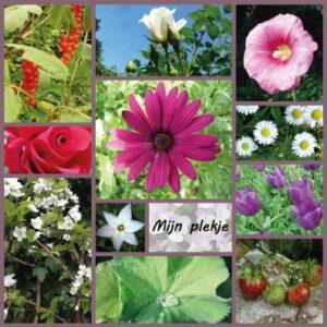 Crematie Apeldoorn. rouwkaart met foto's uit eigen tuin