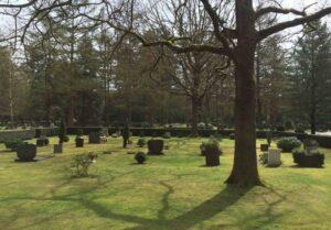 Begraafplaats Norelbos, de begraafplaats loopt over in het omringende bos