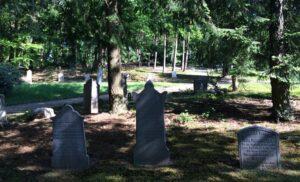 Begraafplaats Heiderust Rheden het oude gedeelte gaat op in de omgeving